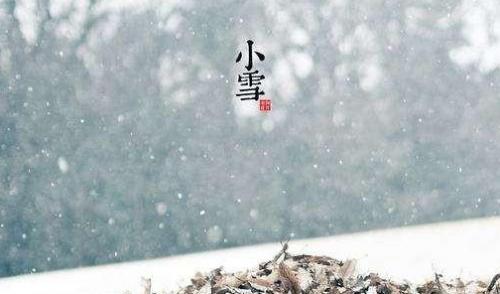 小雪时节,一起来品味冬酿!
